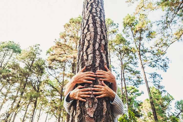 Love for Nature at JML